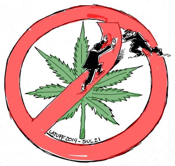 Senado debate legalizacao da maconha